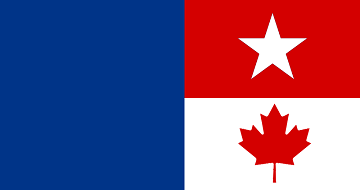 Niagara Falls Flag