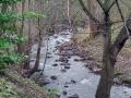 Duddingston - Figgate park