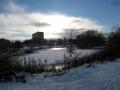 Snowy Duddingston - Figgate park