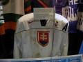 Toronto Hockey Hall of Fame - Slovakia