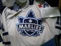 Toronto Hockey Hall of Fame - Toronto Marlies