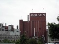 Montreal Quebec Molson