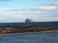 North Berwick - The Bass Rock