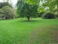 Royal Botanic Garden - Edinburgh