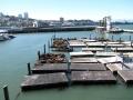 San Francisco, Pier 39