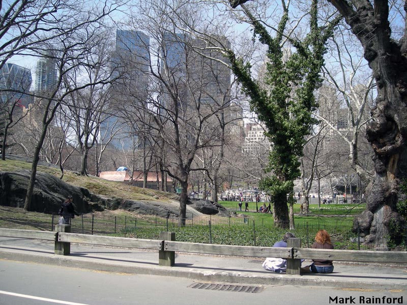 NYC Central Park 2008